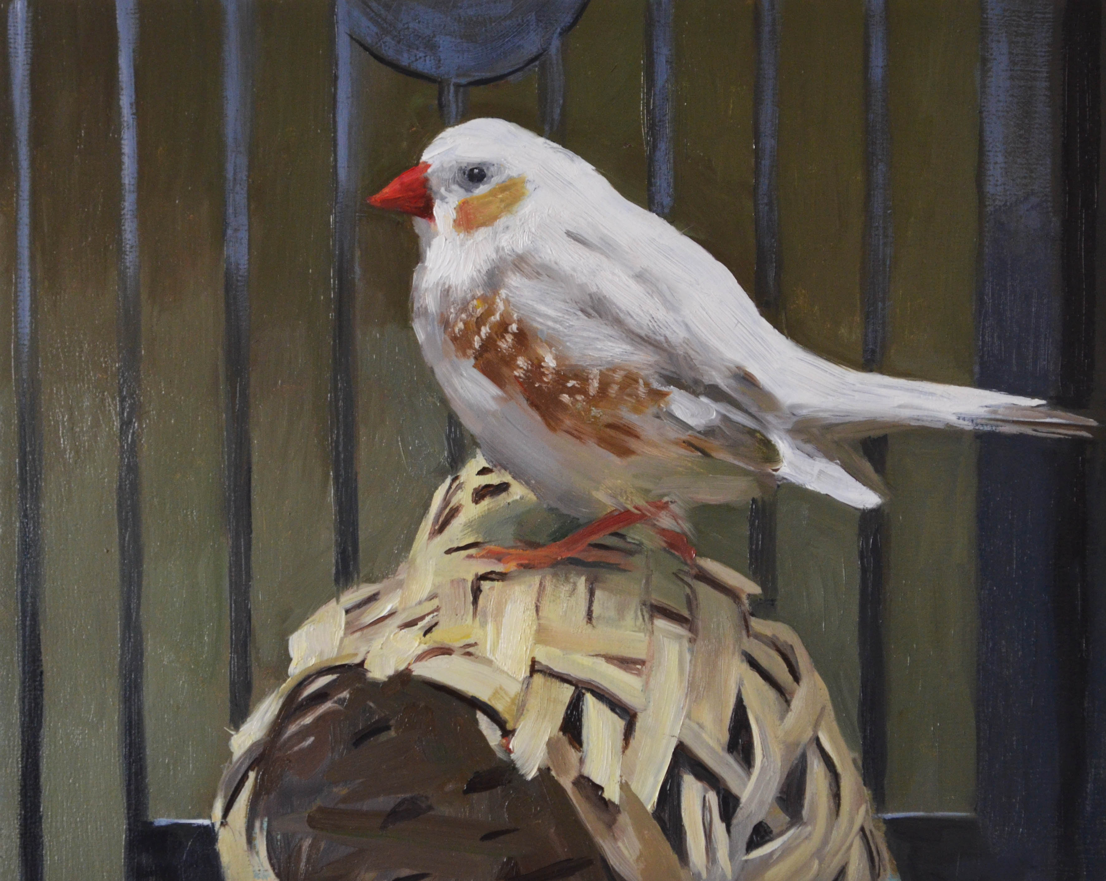 "The Finch, oil on panel, 8"" x 10"", 2017."